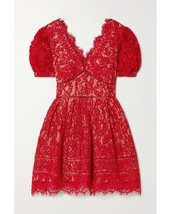 Crochet-trimmed Cotton-blend Corded Lace Mini Dress