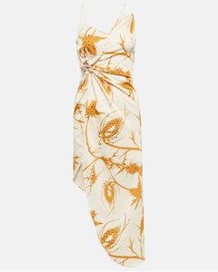 Transparent long dress