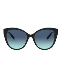 T True Cat Eye Sunglasses
