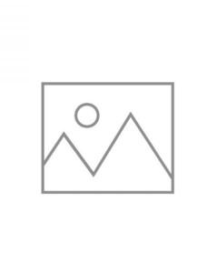 Vettori paisley-print cotton-silk blend scarf