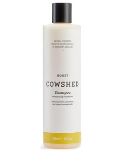 The Dewy Skin Cream Replenishing & Plumping Moisturizer
