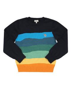 Striped Cotton Knit Sweater
