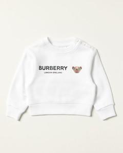 cotton sweatshirt with Thomas bear