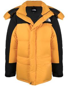 双色填充夹克