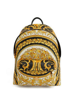Baroque Printed Crossbody Bag